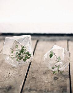 Bling for Your Flowers: Diamond Vases - Gardenista Cactus Planta, Cactus Y Suculentas, Home Greenhouse, Nature Plants, Hobby Farms, Green Life, Home Decor Furniture, Modern Retro, Wedding Designs