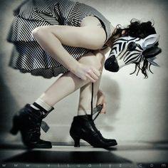 zebra... I love