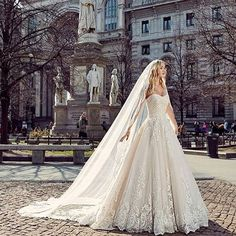 Strapless lace wedding dress with, a-line skirt and cathedral lace veil