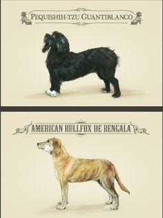 blog_razas_y_perros