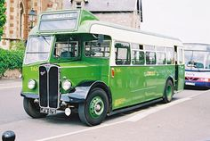 Miss Millie, look at this old green bus. No matter how cute you are, old green bus, no buses allowed.