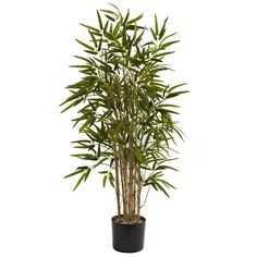 Nearly Natural 5420 Twiggy Bamboo Tree, 3.5-Feet, Green ** Learn more by visiting the image link.