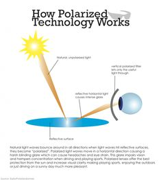 Polarized Technololgy Understanding the benefits of polarized technology and how this technology provides a benefit to eyewear.