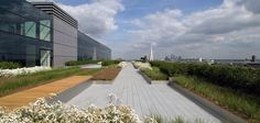 Townshend Landscape Architects - Projects - One Bishops Square Roof Terrace