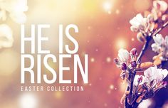 He Is Risen! And it's time to celebrate it! We've collected and created beautiful background slides, compelling sermon illustrations and more to help your church celebrate this Easter week. Discover a resource!