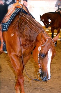 working cow horse Cutting western quarter paint horse appaloosa equine tack cowboy cowgirl rodeo ranch show ponypleasure barrel racing pole bending saddle bronc gymkhana