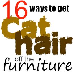 A coating of cat hair on everything is kind of an occupational hazard for cat owners.  Here are 16 ways to get cat hair off of floors, furniture, clothing, and more.