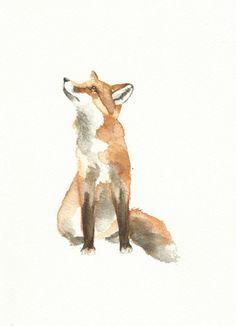 fox watercolour original paiting | eBay