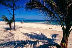 China Beach in Da Nang, Vietnam