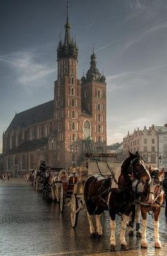 Krakow, Poland. Behind is saint marys church. When I visited for thanksgiving it was absolutely beautiful. There is a square to the right of these horses and plenty of history right in the middle of this park.