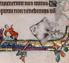 discarding images - giant ray Macclesfield Psalter, England ca. Medieval Books, Medieval Life, Medieval Manuscript, Medieval Art, Illuminated Manuscript, Medieval Drawings, Rennaissance Art, Image Of Fish, Magnificent Beasts