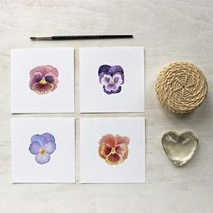Collection of four pansy prints by watercolour artist Kathleen Maunder, trowelandpaintbrush