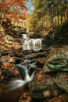 Ricketts Glen State Park, Pennsylvania Beautiful World, Beautiful Places, Beautiful Pictures, All Nature, Amazing Nature, Beautiful Waterfalls, Beautiful Landscapes, Landscape Photography, Nature Photography
