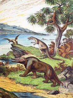 1888 Megalosaurus, Dryptosaurus Dinosaurs Premium Poster by Paul Stewart at Art.com Paul Stewart, Dinosaur Posters, Prehistoric, Dinosaurs, Find Art, Framed Artwork, Art Reference, Moose Art, Animals