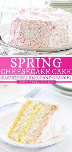 This Spring Cheesecake Cake is guaranteed to make you happy! This easy Easter dessert recipe starts with layers of flavored cheesecake paired with a wonderful white cake. The cheesecake is a perfect reflection of the flavors and colors of Easter! It's the best Easter dessert! Elegant Desserts, Desserts For A Crowd, Fancy Desserts, Beautiful Desserts, Dessert Recipes, Easy Impressive Dessert, I Am Baker, Cheesecake Cake, Vanilla Cake