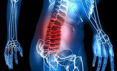 El dolor lumbar es confundido y comúnmente asociado al dolor de riñones, se sitúa entre la cintura y el coxis. Es parte del sistema de sostenimiento.