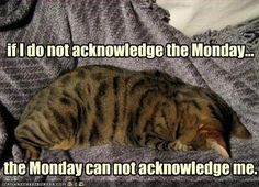 If I do not acknowledge the Monday....