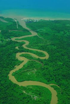 Monkey river estuary  Belize.  Traveled this by boat to see the howler monkeys.  2011