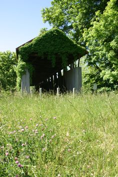 Old Town Covered Bridge, Greenup County, Kentucky