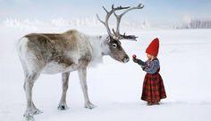 Reindeer and girl