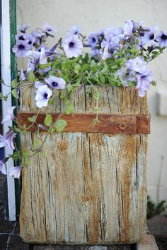 Faux Bois in Concrete Planter   Hand made Faux Bois (fake wo…   Flickr
