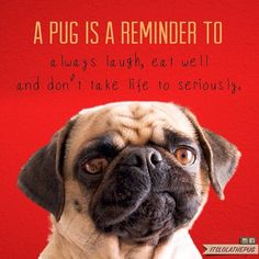 http://europug.eu/ a little reminder ;-)
