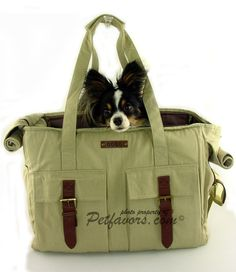 Khaki Buckle Tote Pet Carrier - Petfavors.com - The on-line store for pampered pets. Designer pet beds, pet carriers, outdoor cat enclosures... petfavors.com $67.00