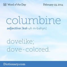 Thank you universe for creating this word!