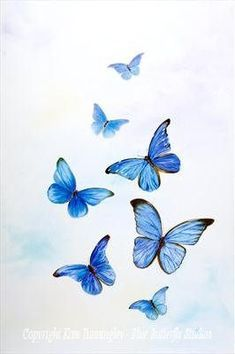 What is Your Painting Style? How do you find your own painting style? What is your painting style? Blue Butterfly Tattoo, Blue Butterfly Wallpaper, Morpho Butterfly, Butterfly Drawing, Butterfly Painting, Butterfly Watercolor, Watercolor Tattoo, Blue Tattoo, Butterfly Illustration