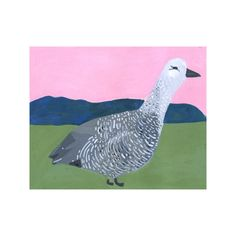 "Original gouache painting of an upland goose on 10"" by 8"" printmaking  paper.   $15 of the sale of this piece is donated to the National Audubon Society.  signed on the back, shipped priority mail with tracking info"