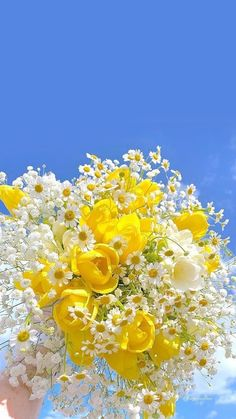 Daisy Wallpaper, Flower Iphone Wallpaper, Vintage Flowers Wallpaper, Spring Wallpaper, Flower Background Wallpaper, Scenery Wallpaper, Aesthetic Pastel Wallpaper, Flower Backgrounds, Nature Wallpaper