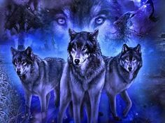 Spirit Of Brotherhood - Fantasy & Abstract Background Wallpapers . Wolf Images, Wolf Photos, Wolf Pictures, Pictures To Draw, Free Pictures, Wolf Craft, Native American Wolf, Wolf Artwork, Cute Fantasy Creatures