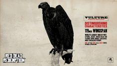 Red Dead Redemption Concept Art - Vulture
