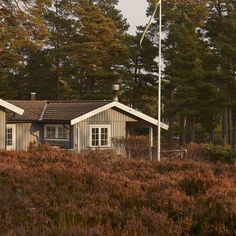 House in the woods shot by @tombunning on the remote island of #sandhamn part of the #stockholmarchipelago in #Sweden for independent travel publication @lodestarsanthology #landscape #travel #weareflock #photography #nordic #scandanavia v