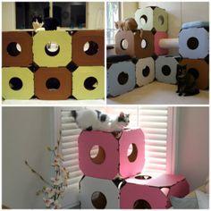 Estructura de cajas de cartón