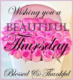 Wish you a beautiful Thursday