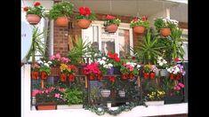 70 Creative Home Gardening Ideas Primary 64 Small Garden Design Pictures Gallery Balcony Flowers, Balcony Plants, Balcony Garden, Potted Plants, Plant Pots, Indoor Garden, Small Garden Climbing Frames, Small Garden Chairs, Garden Design Pictures