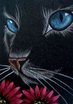 Cat with Red Flowers par Cyra R. Cancel Cat with Red Flowers par Cyra R. Cancel The post Cat with Red Flowers par Cyra R. Cancel appeared first on Katzen. Pastel Artwork, Oil Pastel Art, Art Drawings Sketches, Animal Drawings, Black Paper Drawing, Sidewalk Chalk Art, Chalk Pastels, Oil Pastels, Cat Art
