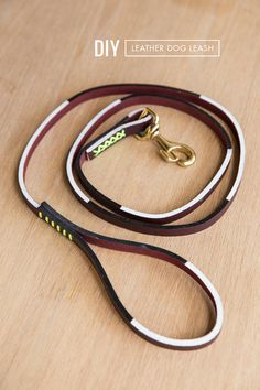 #diy dog leash