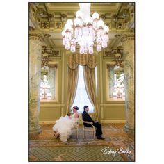 Proposal Photography, Engagement Photography, Wedding Photography, Perfect Image, Perfect Photo, Love Photos, Cool Pictures, Washington Dc Wedding, Dc Weddings
