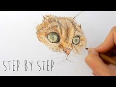 Draw With Me | How to draw realistic cat fur and nose with colored pencils step by step | Emmy Kalia - YouTube