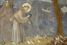 We're not all called to be St. Francis, but there are powerful things his life is still teaching us.
