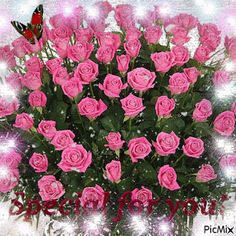 Special for you - animated gif Beautiful Rose Flowers, Flowers Gif, Beautiful Gif, Flowers For You, Beautiful Flowers, Happy Birthday Flower, Happy Birthday Greetings, Birthday Wishes, Rainbow Roses