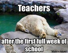 After the first full week. ..