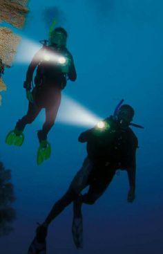 Night #Dive