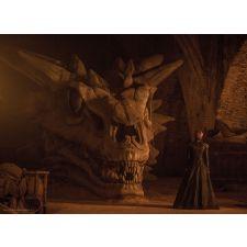 Game of Thrones - Balerion the Black Dread Balerion The Black Dread, Black Dreads, Game Of Thrones King, Best Television Series, Max Von Sydow, Metal Model Kits, Metal Earth, Nikolaj Coster Waldau, Ensemble Cast