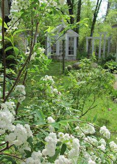 love my greenhouse