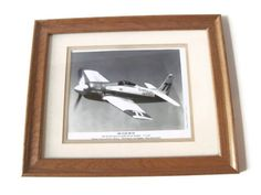 Vintage Rare Bear Airplane Photograph Professionally by Relic189, $10.00