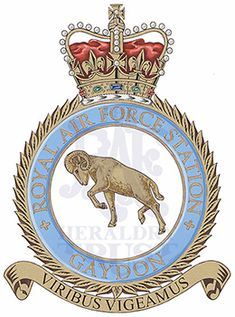Fortune Favors The Bold, Royal Air Force, Crests, King George, Badges, Ww2, Knight, Aircraft, Army