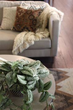 Cocoon Home | Layered Neutrals:  Part 2 | http://cocoonhome.com